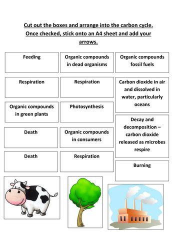 Carbon Cycle Worksheet Answers by B1 5 4 Carbon Cycle By Nryates157 Teaching Resources Tes