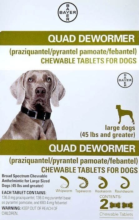 dewormer for puppies at home dewormer for large dogs 45 lbs 2 chewable