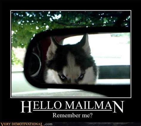 Remember Me Meme - hello mailman remember me funny pictures quotes