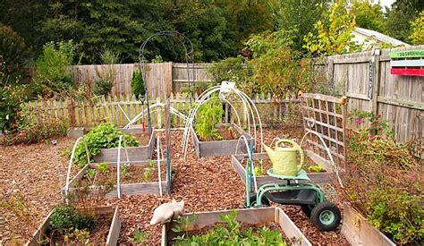 100 Soil Amendments For Vegetable Garden Impressive Soil Amendments For Vegetable Garden