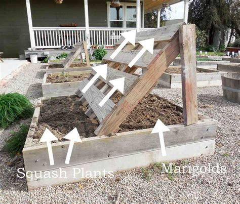 pallet raised bed raised beds are the rage idea box by barb rosen