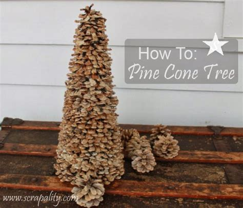 how to pine cone tree