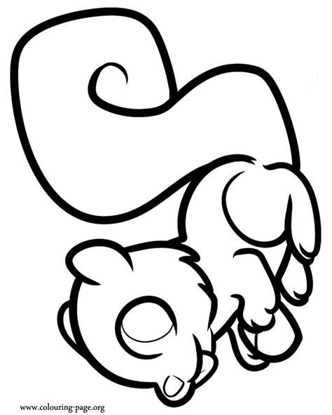 cute squirrel coloring pages cute cartoon baby squirrel coloring pages coloring pages