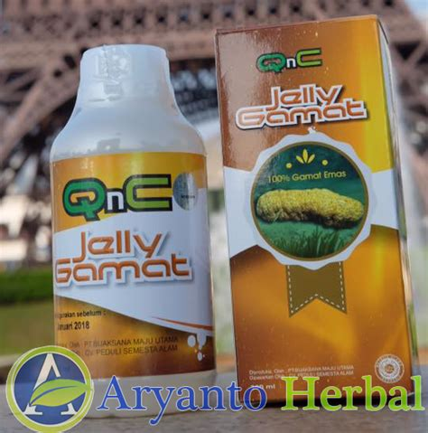 Qnc Jelly Gamat Bpom obat alergi alami