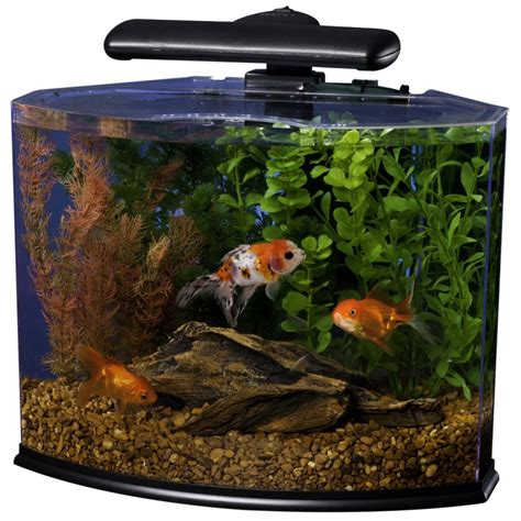 Small Aquarium Models For Home 5 Best Tetra Aquarium Attractive Sturdy And Functional