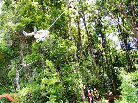 tarzan swing monteverde costa rica 10 top things to do in monteverde costa rica enchanting