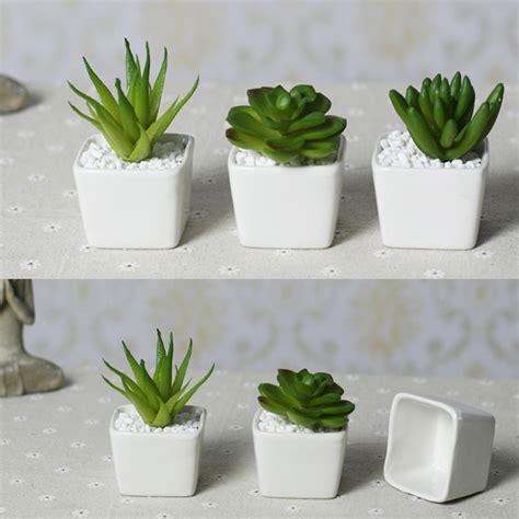 top price  shipping mini indoor ceramic pots plant