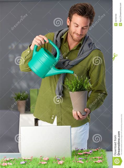 handsome man watering plant  home stock photo image