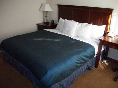 hotels with 2 bedroom suites in memphis tn homewood suites by hilton memphis poplar memphis tn