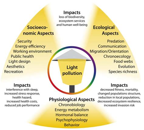 effects of light pollution what is light pollution