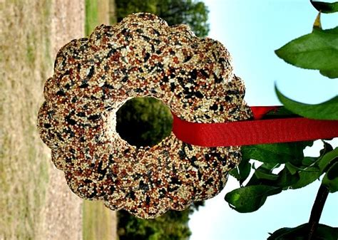 birdseed wreath wreaths pinterest