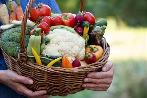 alimento organico alimento org 226 nico n 227 o 233 mais nutritivo que o convencional