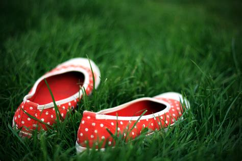 grass shoes file shoes in the grass jpg