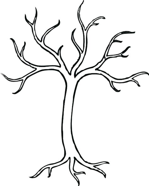 Outline Of Tree With Branches Clipart Best Tree Coloring Page Outline