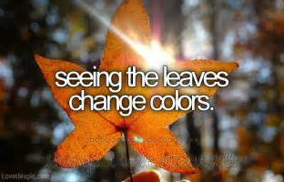 something that changes color fall leave colors quotes quotesgram