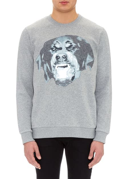 grey rottweiler givenchy cuban fit rottweiler print sweater in gray for lyst