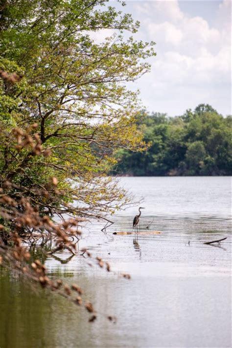 boat dock jacksonville il lake jacksonville jacksonville area convention