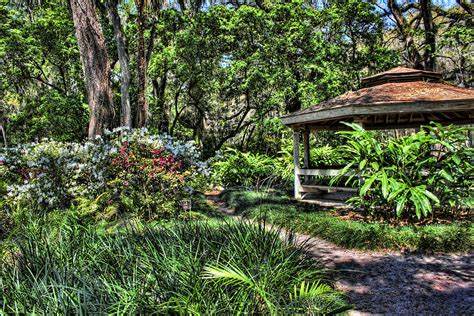 sugar mill botanical gardens the ongoing list of florida photoshoot locations