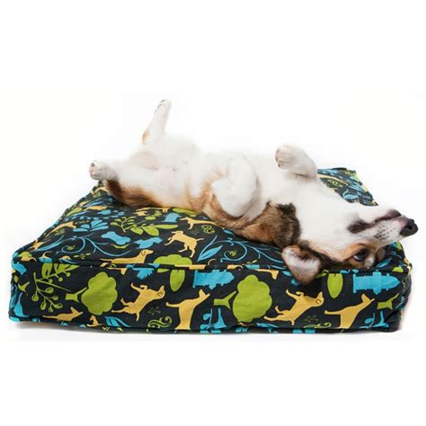 why does my dog hump his bed purple polka dot squirrel dog bed duvet cover dog duvet