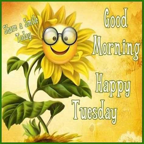 a day bilder morning happy tuesday a smile day pictures