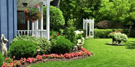 common backyard trees common backyard trees 3 common yard drainage issues how to