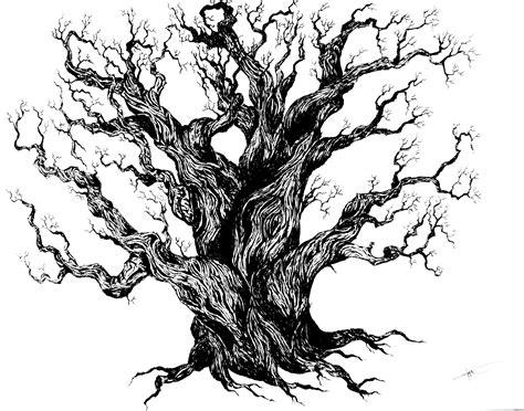 tree drawing timelapse 19hertz