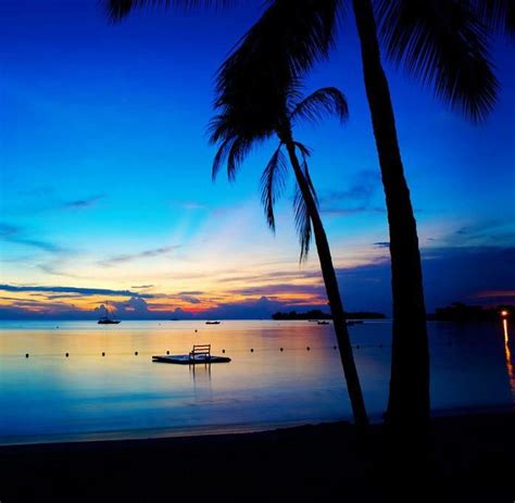 airbnb boat rental falmouth 293 best tropical images on pinterest nature