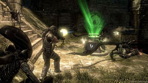 Pc Aliens Vs Predator aliens vs predator 2010