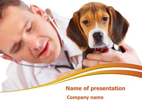 powerpoint templates veterinary medicine veterinarian presentation template for powerpoint and