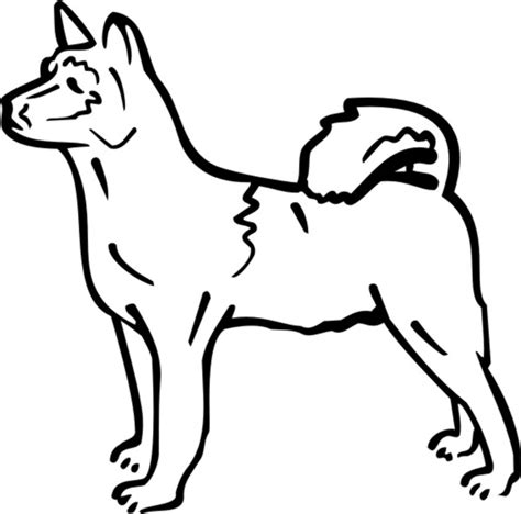 cool coloring pages of dogs new dogs to color cool gallery coloring kids d 8269