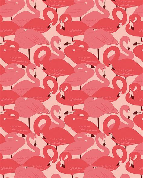 flamingo wallpaper pattern 323 best prints and patterns images on pinterest