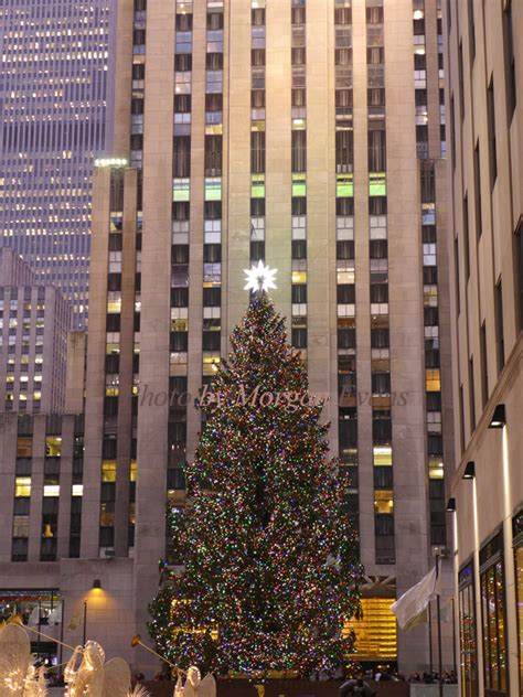 the christmas tree at rockefeller center manhattan ny