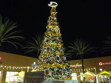 christmas trees irvine trees it has grown on me