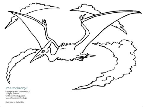zoom dinosaurs coloring pages dinosaur coloring sheets 1