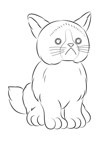coloring page grumpy cat webkinz grumpy cat coloring page free printable coloring