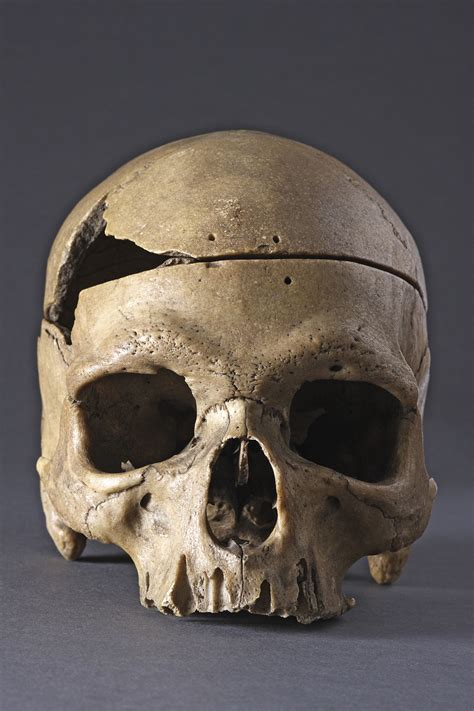 Rare And Interesting Ancient Prehistoric Classic Skull On