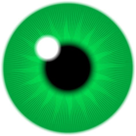 free clipart photos green iris vector clipart image free stock photo