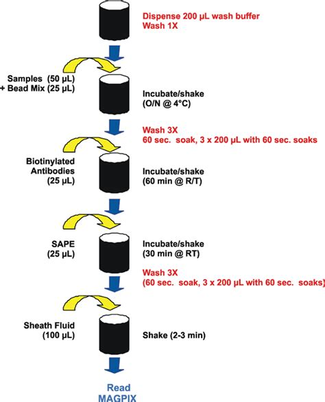 automated washing of multiplex bead based assays for the