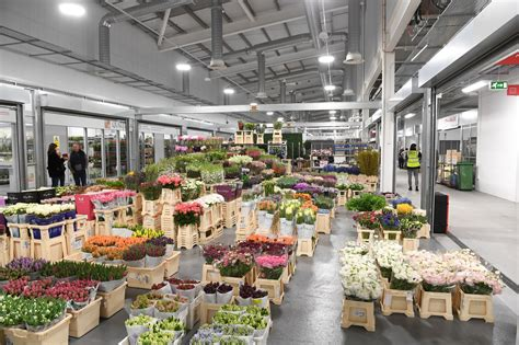 Keeping Drainage Fresh And Healthy At New Covent Garden Covent Garden Vegetable Market