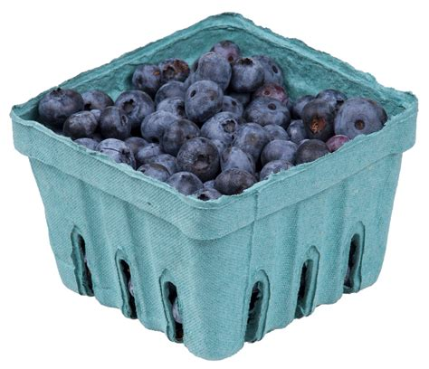 Berry Me Blue file blueberries in pack jpg wikimedia commons