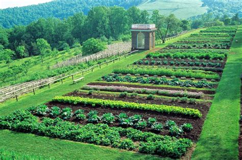 The White House Garden Gets Support To Endure From Burpee White House Vegetable Garden