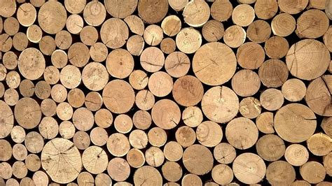 wood material free photo material wood logs casing free image on