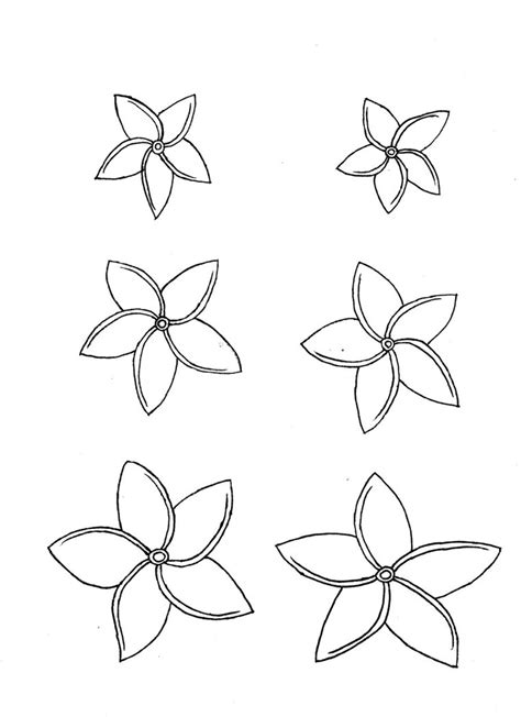 plumeria flower drawing the gallery for gt plumeria flower drawing