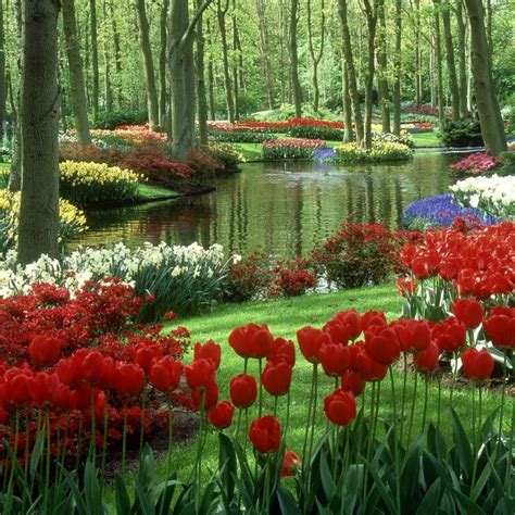 flower garden pictures flower garden on 1 new hd wallpapers