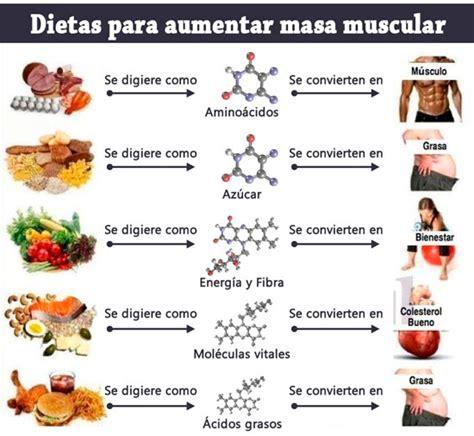 alimentos para subir masa muscular dietas para aumentar masa muscular datos 250 tiles