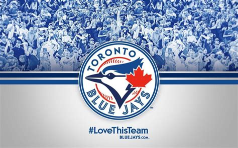 blue jays wallpaper android blue jays wallpapers wallpaper cave