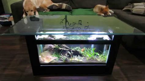 fish tank headboard for sale aquarium coffee table for sale into the glass awesome