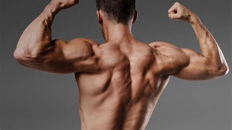 build lean muscle mass      smart
