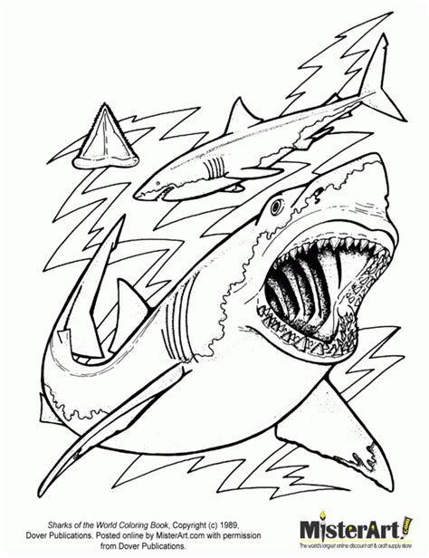 great white sharks coloring pages coloring home