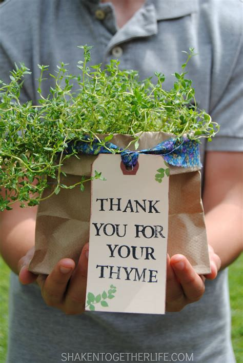 herb garden gift ideas thank you herb gifts a owl
